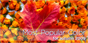 Most Popular Color for 2009 autumn