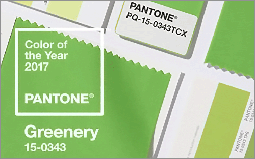 2017年のトレンドカラー「Greenery(グリーナリィ)」