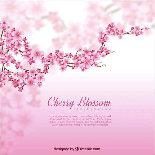 桜のイラスト素材