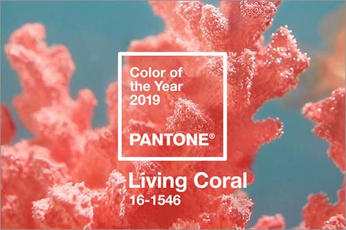 2019年 トレンドカラー  リビングコーラル(Living Coral)