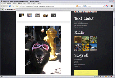 Javascript Image Gallery Using Mootoolsのキャプチャ